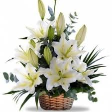 White Lilies in basket