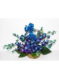 6 Blue orchids Basket