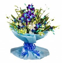 10 Blue Orchids bouquet