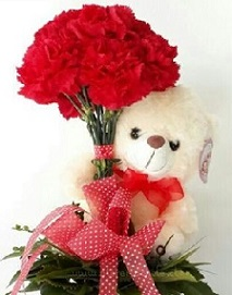 12 Inches Teddy bear holding a bouquet of 10 red carnations with red ribbon