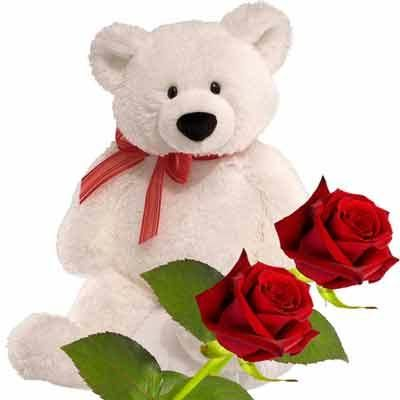 12 inches Teddy with 2 Red roses